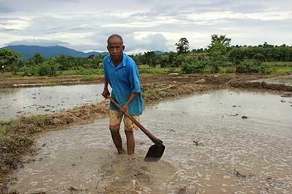 Un campesino sostiene la azada en un campo de arroz en Pai, al norte de Tailandia.