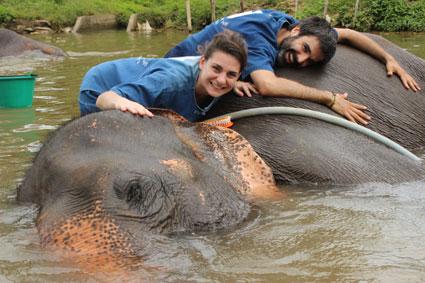 Abrazo a un elefante que se refresca en la charca del campamento Baan Chang, en Chiang Mai