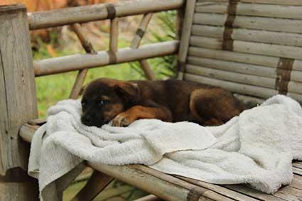 La pequeña Pai descansa hecha un obillo con la toalla después de la ducha, Tailandia.