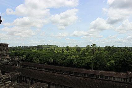 La selva rodea los restos de los templos de Angkor Wat (Camboya).
