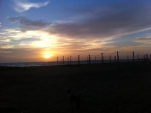 Atardeccer en la playa de Negombo, Sri Lanka.