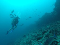buceo7