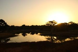 Amanecer en el Parque Nacional de Yala, en Sri Lanka.