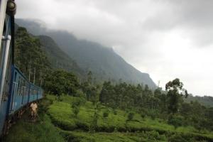 Campos de té y una montaña cubierta por la niebla al paso del tren que va de Kandy a Ella, Sri Lanka