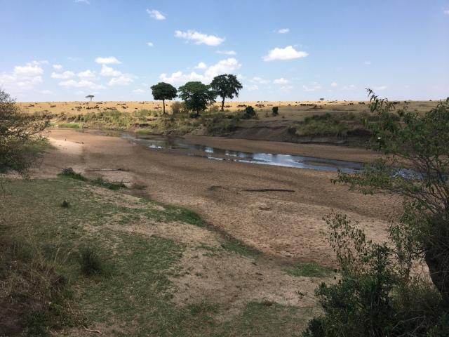 Río Mara en el PN de Masai Mara, Kenia.